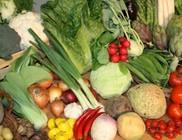 A reformtáplálkozás és a makrobiotikus étrend