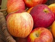 Őszi finomságok, amik még a fogyást is segítik