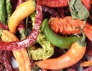 Fűszerekkel és zöldségekkel az egészségért