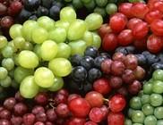 A szőlő fogyasztása segíti az emésztést is