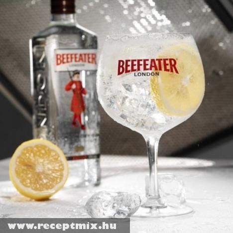 2010 legjobb Gin-je