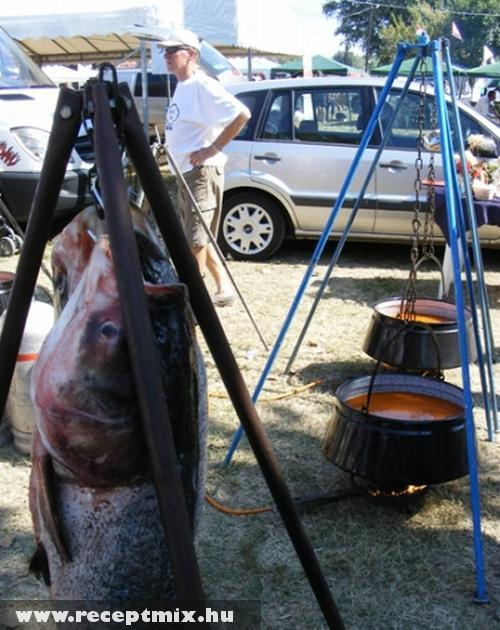 Szögedi halászlé - és a frissen fogott halak