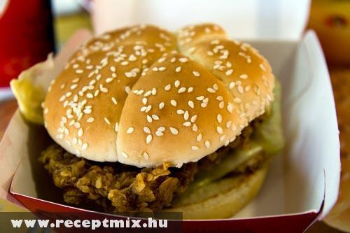 KFC So Good - Zinger Burger :)