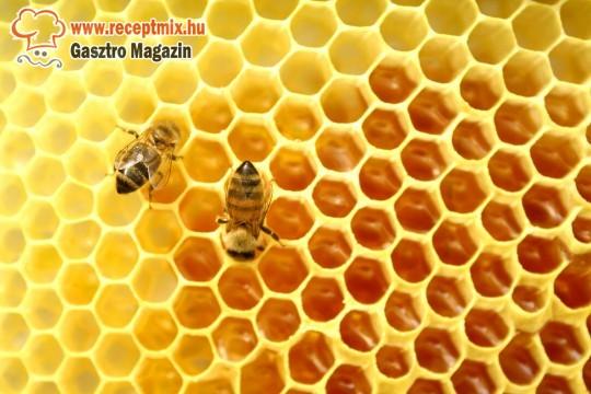 A méz a természet csodás gyümölcse!