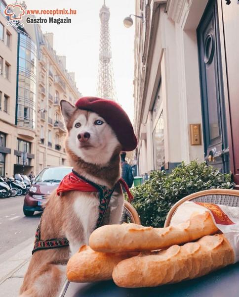 Francia kenyér