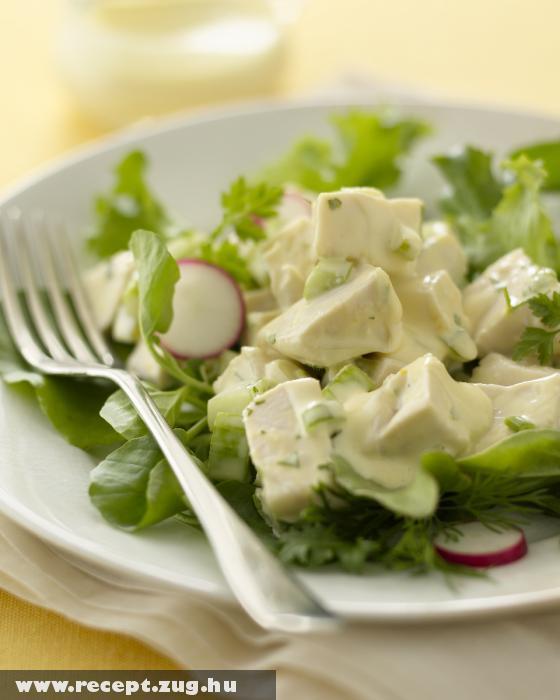 Páriszi csirkemell saláta