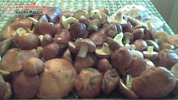 Tinoru,őzláb és erdei pöffeteg gomba